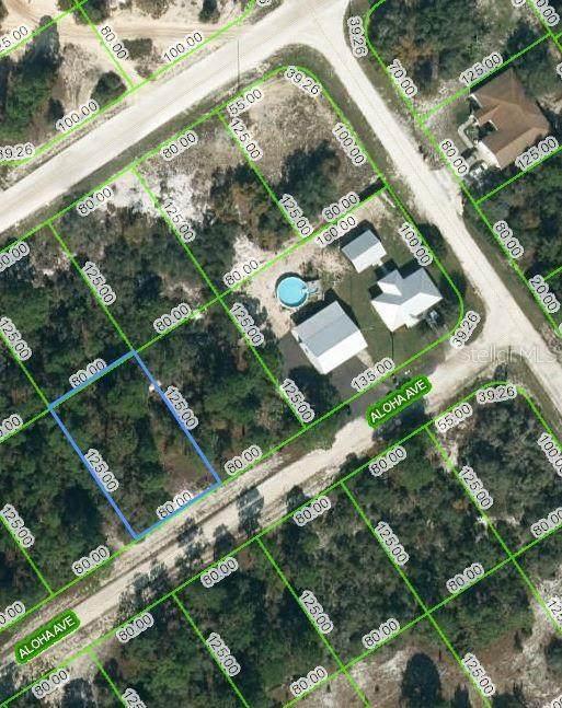 452 Aloha Avenue, Lake Placid, FL 33852 (MLS #OM624390) :: EXIT Realty Positive Edge