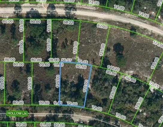 408 Hollow Lane, Lake Placid, FL 33852 (MLS #OM624444) :: CENTURY 21 OneBlue