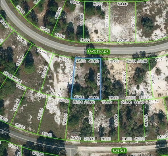 658 Lake Tina Drive, Lake Placid, FL 33852 (MLS #OM624452) :: CENTURY 21 OneBlue