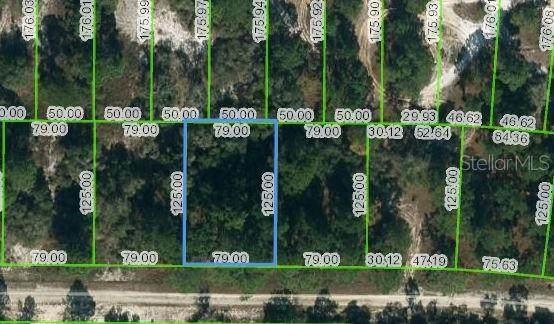 428 Morningside Drive, Lake Placid, FL 33852 (MLS #OM624455) :: CENTURY 21 OneBlue