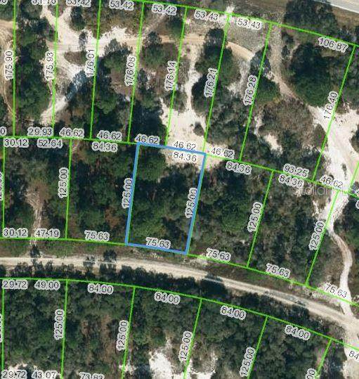 444 Morningside Drive, Lake Placid, FL 33852 (MLS #OM624458) :: CENTURY 21 OneBlue
