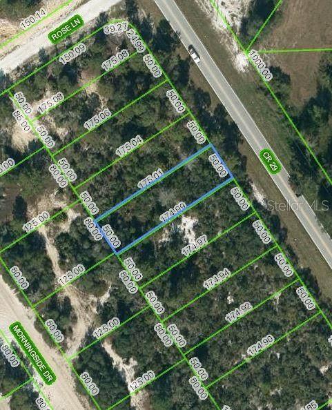 1025 County Road 29, Lake Placid, FL 33852 (MLS #OM624487) :: CENTURY 21 OneBlue