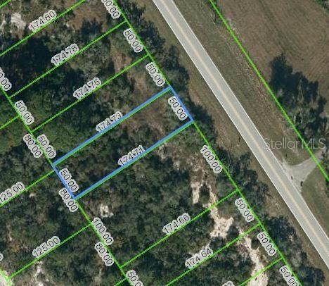 1049 County Road 29, Lake Placid, FL 33852 (MLS #OM624492) :: CENTURY 21 OneBlue