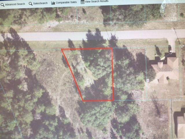 0 SW 161 PLACE, Ocala, FL 34473 (MLS #OM624605) :: EXIT King Realty