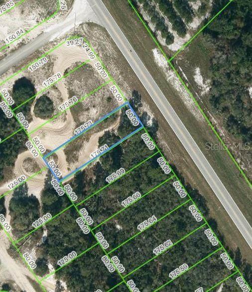 943 County Road 29, Lake Placid, FL 33852 (#OM624616) :: Caine Luxury Team