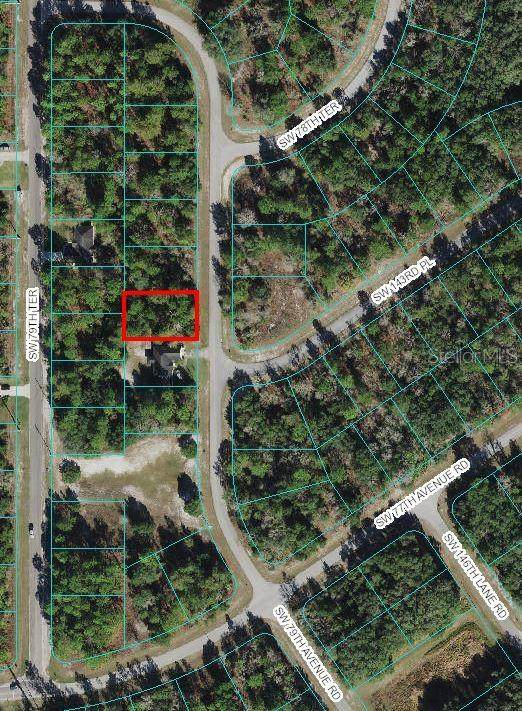 SW 79TH Avenue, Ocala, FL 34473 (MLS #OM624733) :: Century 21 Professional Group