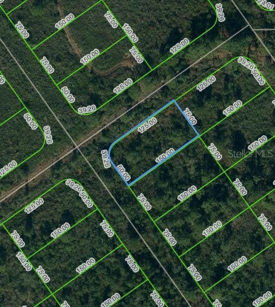 569 Kennedy Street, Lake Placid, FL 33852 (MLS #OM624746) :: Rabell Realty Group