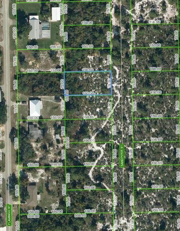 246 Sandpiper Street, Lake Placid, FL 33852 (MLS #OM624827) :: Visionary Properties Inc