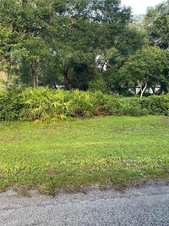 TBD SE 171 Court, Silver Springs, FL 34488 (MLS #OM625244) :: Premium Properties Real Estate Services
