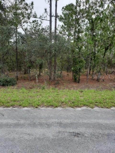 0 SW Lime Ridge Road, Dunnellon, FL 34431 (MLS #OM625577) :: RE/MAX Elite Realty