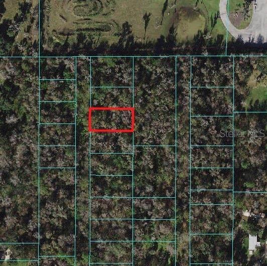 0 SE 41ST Terrace, Belleview, FL 34420 (MLS #OM625647) :: Premium Properties Real Estate Services