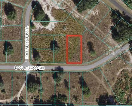 Locust Loop Circle, Ocala, FL 34472 (MLS #OM625690) :: Team Turner