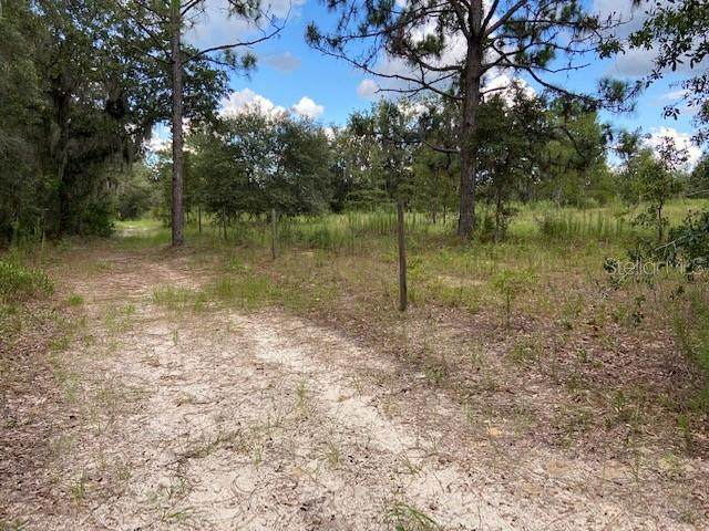 SE 116 TERRACE SE, Williston, FL 32696 (MLS #OM625786) :: SunCoast Home Experts