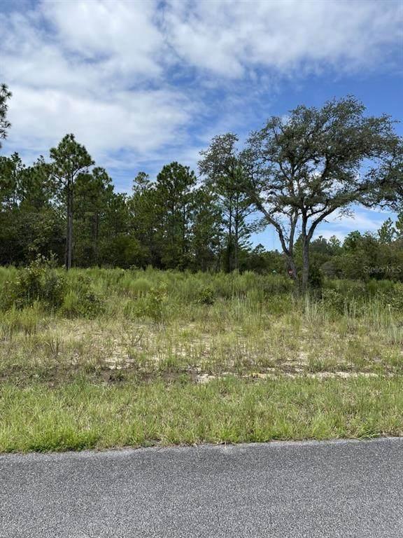 9750 N Lovell Drive, Citrus Springs, FL 34433 (MLS #OM626681) :: Zarghami Group