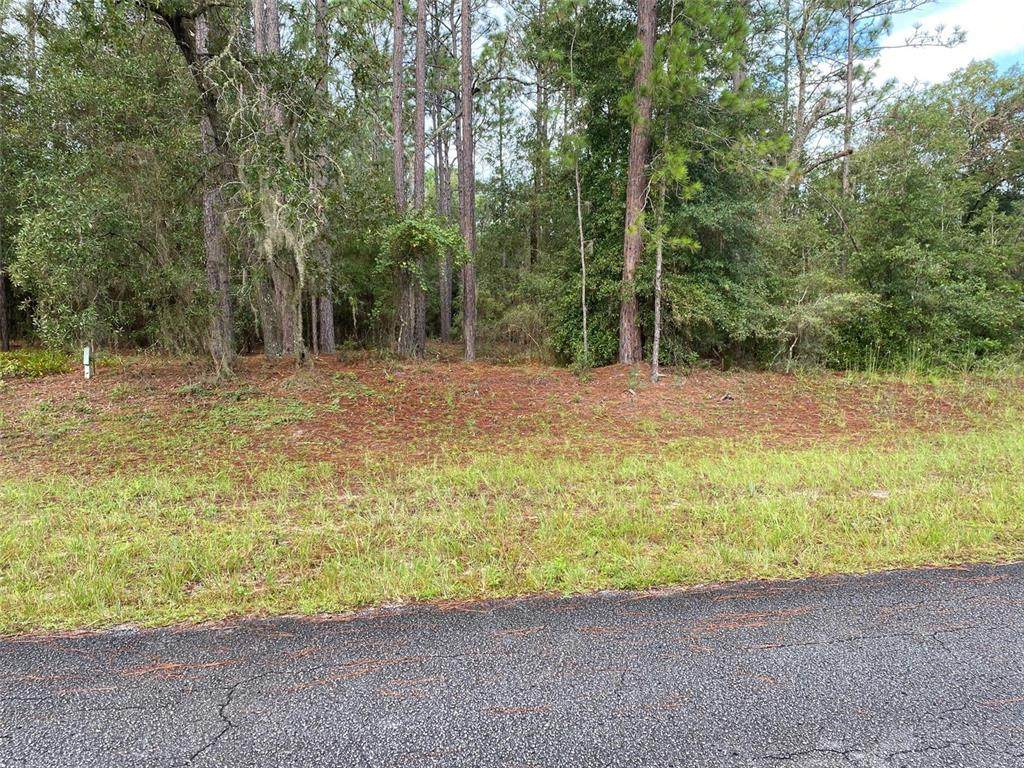 LOT 16 Sw 215Th Court Road - Photo 1