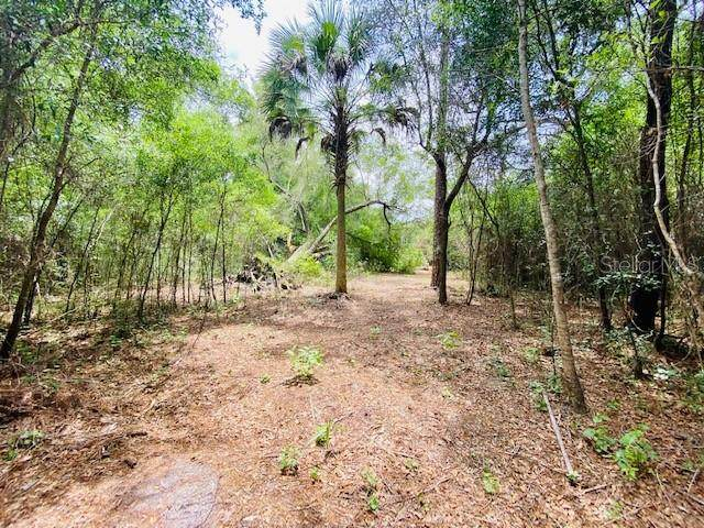 E Hwy 40, Silver Springs, FL 34488 (MLS #OM627147) :: The Paxton Group