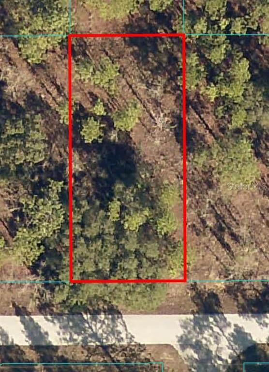 Lot 58 NW Amberjack Avenue, Dunnellon, FL 34431 (MLS #OM627148) :: Zarghami Group