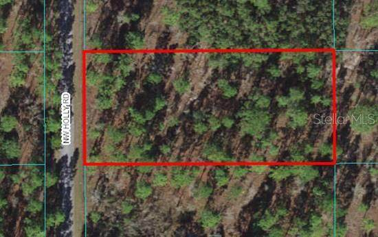 Lot 22 NW Holly Road, Dunnellon, FL 34431 (MLS #OM627171) :: Zarghami Group