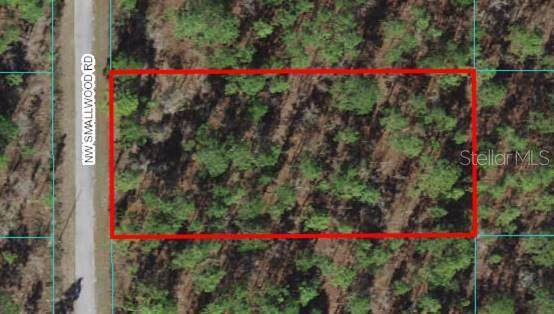 Lot 23 NW Smallwood Road, Dunnellon, FL 34431 (MLS #OM627175) :: RE/MAX Elite Realty