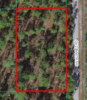 Lot 12 SW Alvarez Road, Dunnellon, FL 34431 (MLS #OM627179) :: RE/MAX Elite Realty