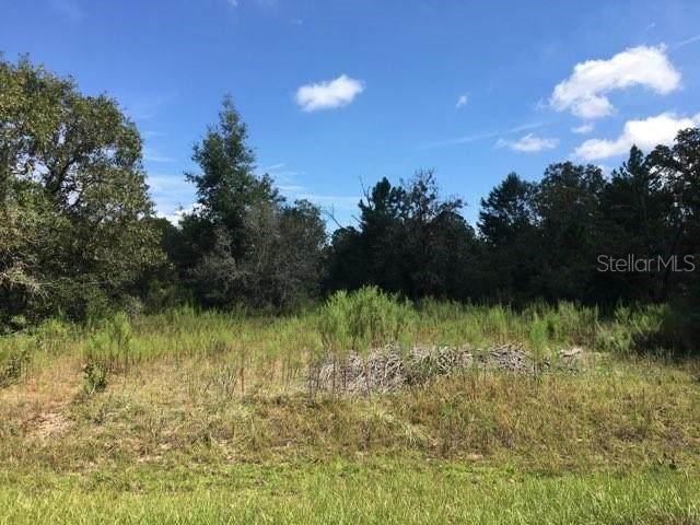 TBD Malauka Place, Ocklawaha, FL 32179 (MLS #OM627183) :: Gate Arty & the Group - Keller Williams Realty Smart