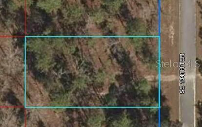 Lot 2 SE 134TH Terrace, Dunnellon, FL 34431 (MLS #OM627186) :: Zarghami Group