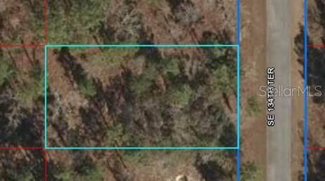Lot 6 SE 134TH Terrace, Dunnellon, FL 34431 (MLS #OM627210) :: Zarghami Group