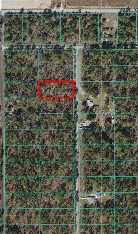 0 NW Holly Road, Dunnellon, FL 34431 (MLS #OM627270) :: Globalwide Realty