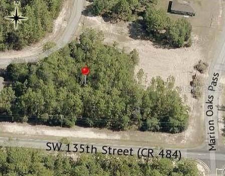 0 SW 134TH Loop, Ocala, FL 34473 (MLS #OM627373) :: RE/MAX Elite Realty