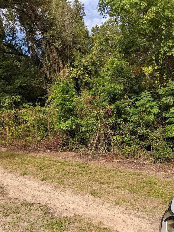 TBD Sw 62Nd Ave, Summerfield, FL 34491 (MLS #OM627489) :: Keller Williams Realty Select