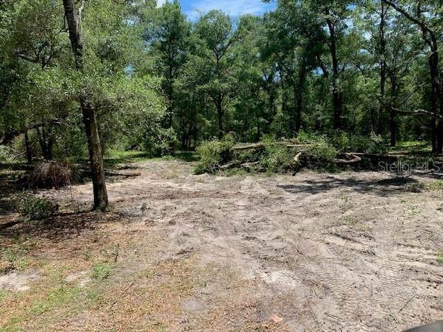 TBD Se 197Th Ct, Morriston, FL 32668 (MLS #OM627572) :: Dalton Wade Real Estate Group