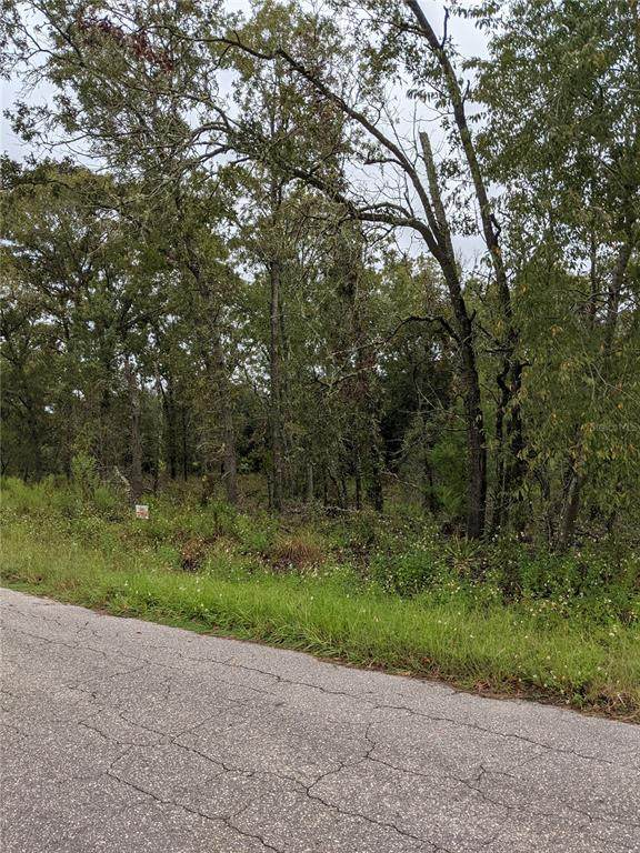 TBD Se 115Th Place Rd, Ocklawaha, FL 32179 (MLS #OM627581) :: The Hustle and Heart Group