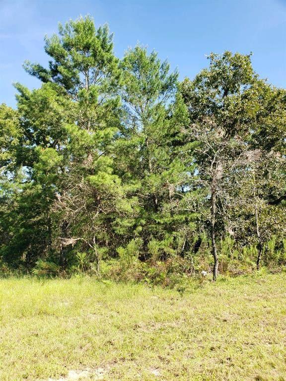 TBD SW 28TH TERRACE Road, Ocala, FL 34473 (MLS #OM627668) :: Bustamante Real Estate