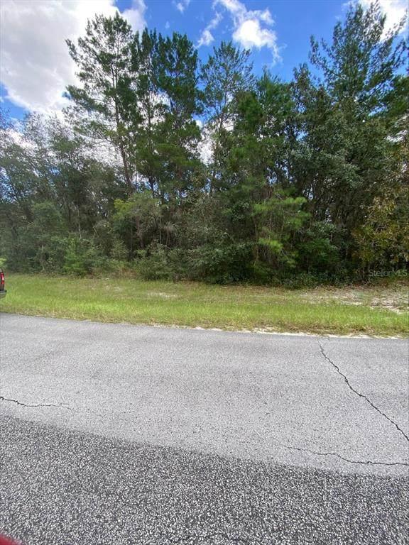 SE 79TH AVE ROAD, Dunnellon, FL 34432 (MLS #OM627761) :: Dalton Wade Real Estate Group