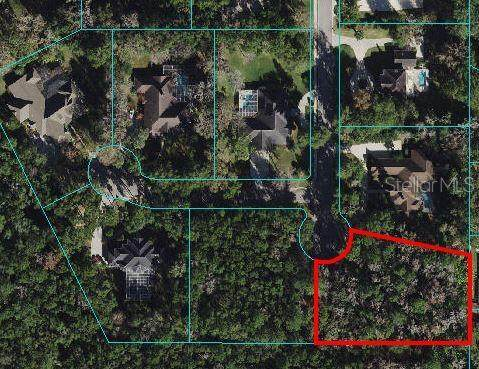 TBD SE 17TH Court, Ocala, FL 34471 (MLS #OM627849) :: Global Properties Realty & Investments