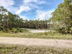 5388 Nutwood Avenue, Bunnell, FL 32110 (MLS #OM628041) :: Delgado Home Team at Keller Williams