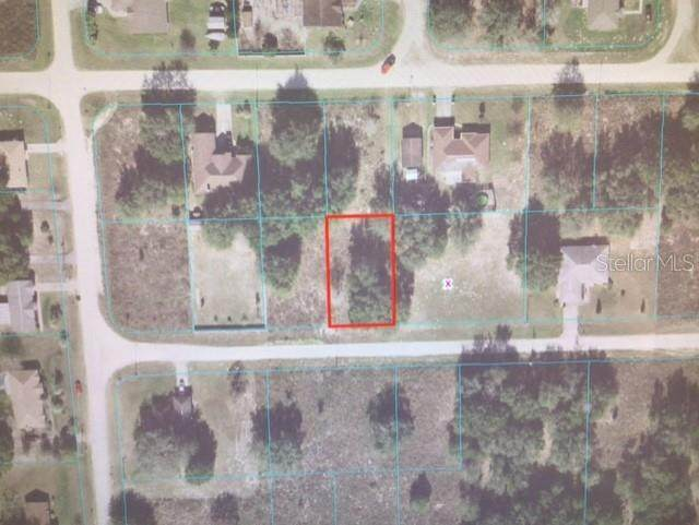 0 SW 102 PLACE, Dunnellon, FL 34432 (MLS #OM628160) :: Everlane Realty