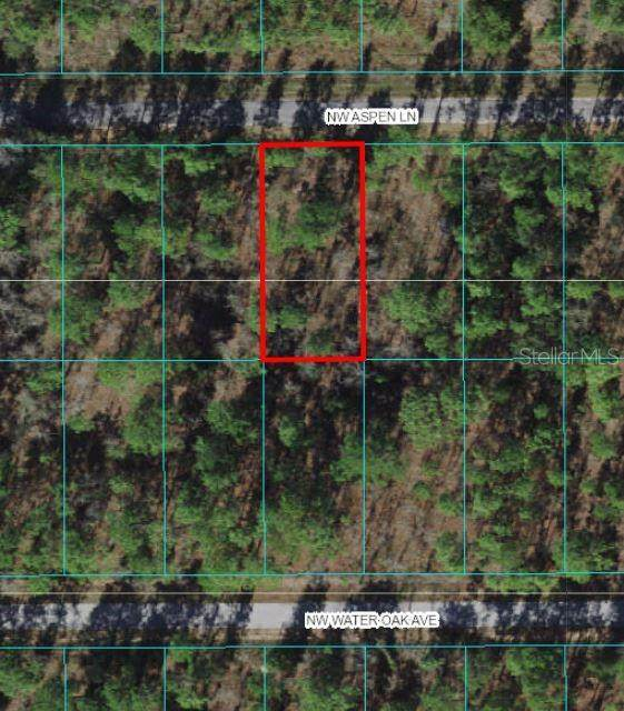 TBD NW Aspen Lane, Dunnellon, FL 34431 (MLS #OM628370) :: Team Bohannon