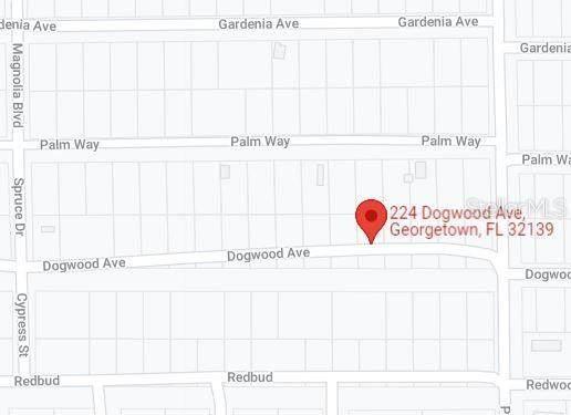 224 Dogwood Avenue, Georgetown, FL 32139 (MLS #OM628408) :: Delgado Home Team at Keller Williams