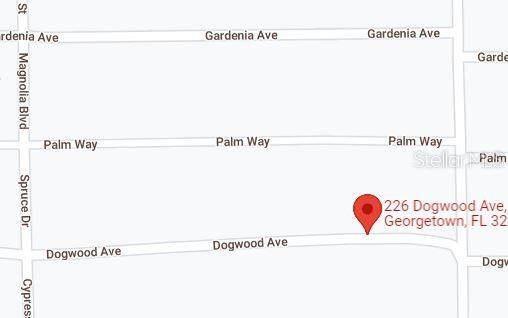 226 Dogwood Avenue, Georgetown, FL 32139 (MLS #OM628410) :: Delgado Home Team at Keller Williams