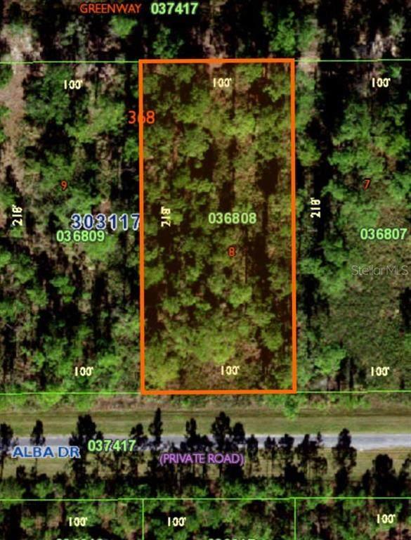 316 Alba Drive, Indian Lake Estates, FL 33855 (MLS #OM628986) :: Team Pepka