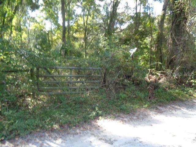 SW 127TH AVE, Archer, FL 32618 (MLS #OM629028) :: Pristine Properties