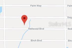 412 Redwood Boulevard, Georgetown, FL 32139 (MLS #OM629066) :: RE/MAX Local Expert