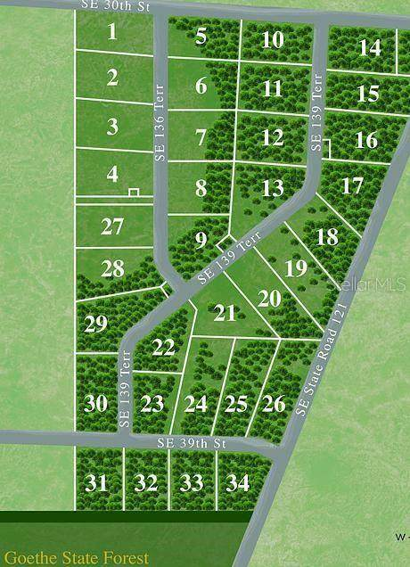 0 SE 36TH Terrace, Morriston, FL 32668 (MLS #OM629110) :: Young Real Estate