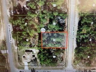 9650 N Lois Terrace, Citrus Springs, FL 34433 (MLS #OM629122) :: Armel Real Estate