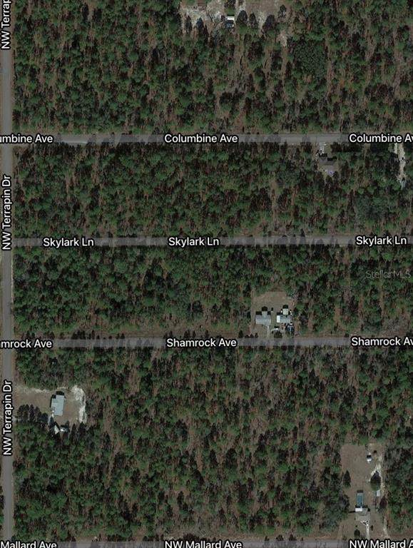 Lot 2 NW Skylark Street, Dunnellon, FL 34431 (MLS #OM629477) :: Century 21 Professional Group