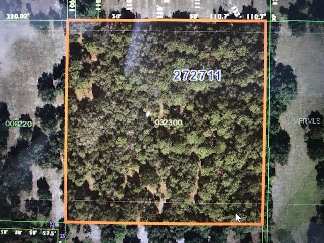 Finney Road, Davenport, FL 33837 (MLS #P4901337) :: KELLER WILLIAMS CLASSIC VI