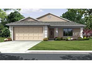 934 O Doniel Drive, Lakeland, FL 33809 (MLS #P4903537) :: Team Bohannon Keller Williams, Tampa Properties