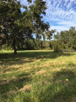 0 Strickland Lane, Auburndale, FL 33823 (MLS #P4903745) :: Gate Arty & the Group - Keller Williams Realty