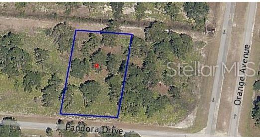 4020 Pandora Drive, Indian Lake Estates, FL 33855 (MLS #P4906469) :: Cartwright Realty